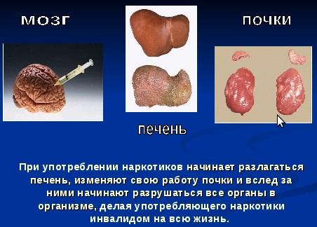 Сколько держатся наркотики в крови - 2018 12 28 czm news 04