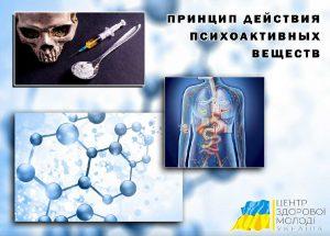 Центр Здоровой Молодежи - Украина Принцип действия психоактивных веществ