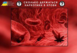 Центр Здоровой Молодежи - Украина Сколько держатся наркотики в крови